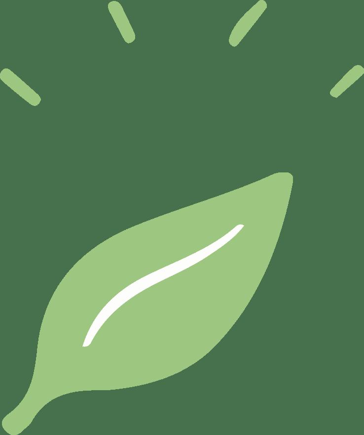 vegalia-spiruline-feuille