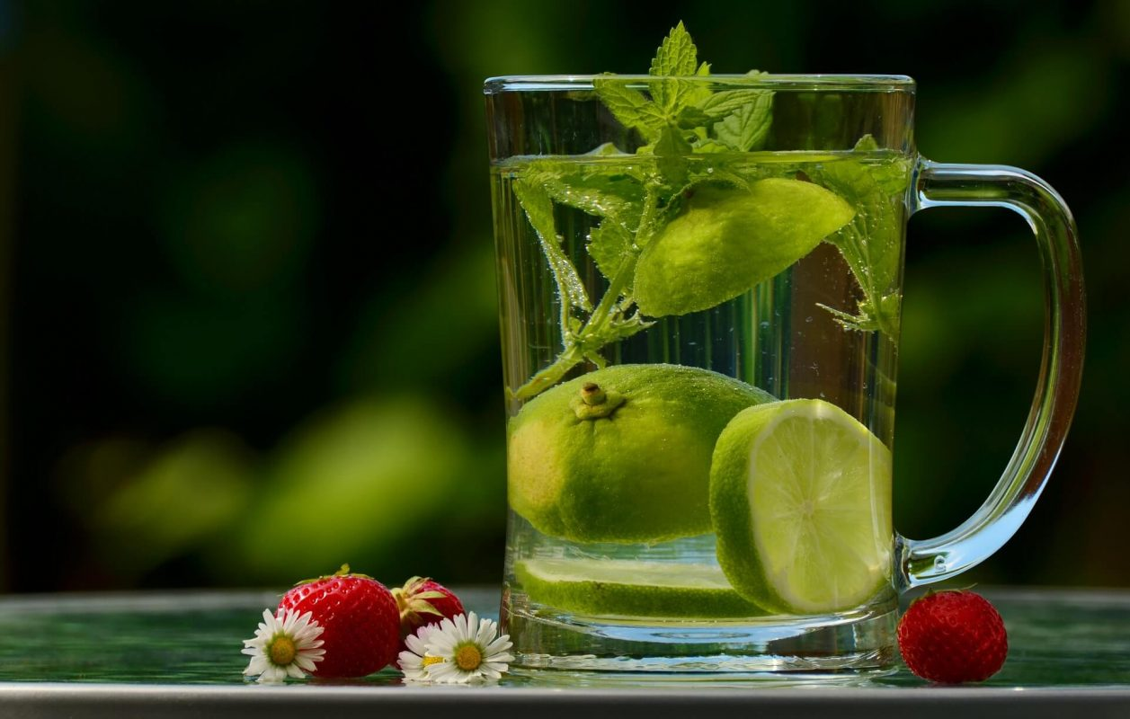 chlorella purifier organisme