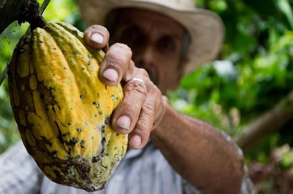 origine-feve-de-cacao